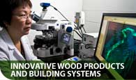 Innovative Wood Products and Building Systems